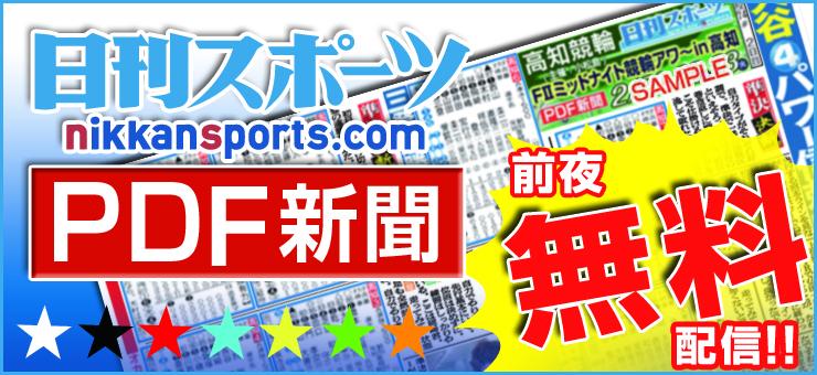 日刊PDF新聞